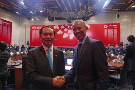 Chu tich nuoc Tran Dai Quang gap lanh dao cac nuoc o APEC - Anh 1