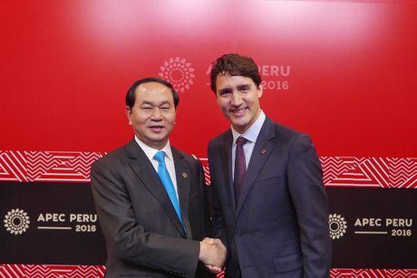 Chu tich nuoc Tran Dai Quang gap lanh dao cac nuoc o APEC - Anh 2