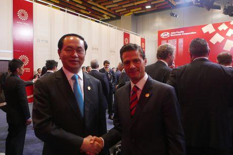Chu tich nuoc Tran Dai Quang gap lanh dao cac nuoc o APEC - Anh 3