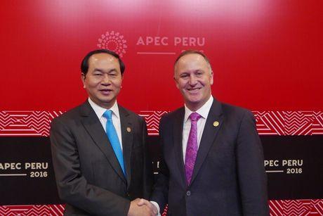 Chu tich nuoc Tran Dai Quang gap lanh dao cac nuoc o APEC - Anh 4