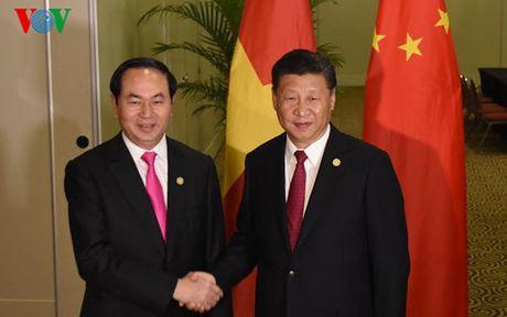 Chu tich nuoc Tran Dai Quang gap rong rai cac lanh dao APEC  - Anh 1