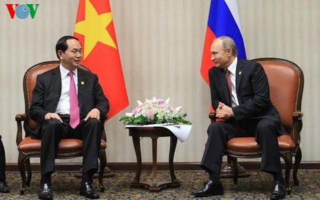 Chu tich nuoc Tran Dai Quang gap rong rai cac lanh dao APEC  - Anh 2