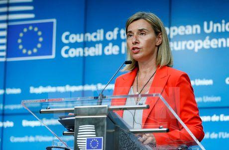 UAE va EU tang cuong thuc day quan he doi tac chien luoc - Anh 1