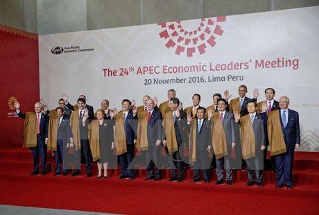 Lanh dao cac nuoc APEC cam ket chong chu nghia bao ho - Anh 1