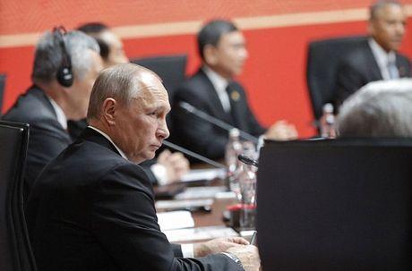 Tong thong Putin bat tay ho hung voi TT Obama tai APEC - Anh 6