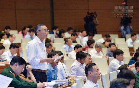 Dai bieu Quoc hoi: 'Do thi cua chung ta lai cang khong ban sac' - Anh 1