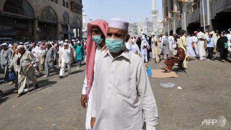 Saudi Arabia canh bao ca nhiem MERS tang - Anh 1