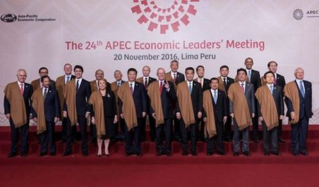 Chu tich nuoc du cac phien hop toan the tai APEC 2016 - Anh 1