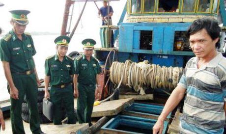 Buon lau tren bien 'nong' dip Tet Nguyen dan - Anh 1