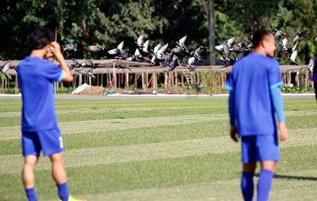 """""""Ronaldo & Messi Viet Nam"""" no luc tim suat da chinh - Anh 3"""