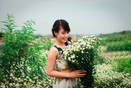 Thieu nu Ha Thanh no nuc chup anh vuon hoa cuc hoa mi - Anh 2