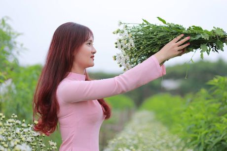 Thieu nu Ha Thanh no nuc chup anh vuon hoa cuc hoa mi - Anh 3