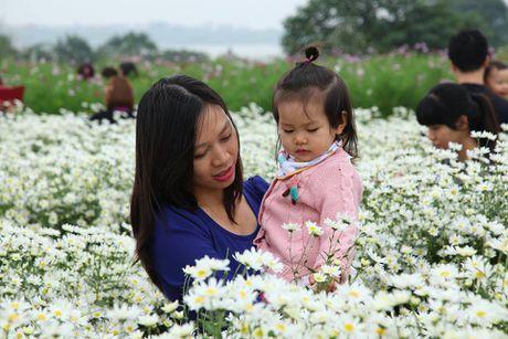 Thieu nu Ha Thanh no nuc chup anh vuon hoa cuc hoa mi - Anh 4