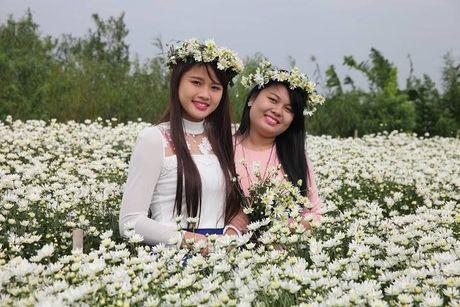Thieu nu Ha Thanh no nuc chup anh vuon hoa cuc hoa mi - Anh 5