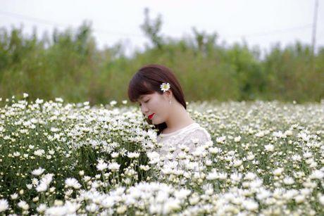 Thieu nu Ha Thanh no nuc chup anh vuon hoa cuc hoa mi - Anh 9