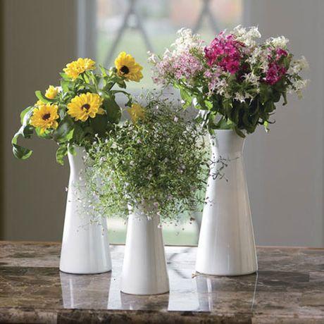 3 loai hoa mang phong thuy xau cho nha o phai tranh ngay - Anh 1