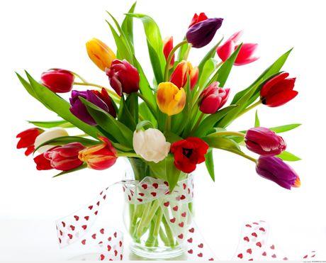3 loai hoa mang phong thuy xau cho nha o phai tranh ngay - Anh 6