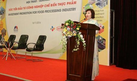 "Thu truong Ho Thi Kim Thoa du Hoi thao ""Xuc tien dau tu trong linh vuc CNCBTP"" - Anh 1"