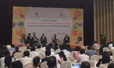"Thu truong Ho Thi Kim Thoa du Hoi thao ""Xuc tien dau tu trong linh vuc CNCBTP"" - Anh 3"