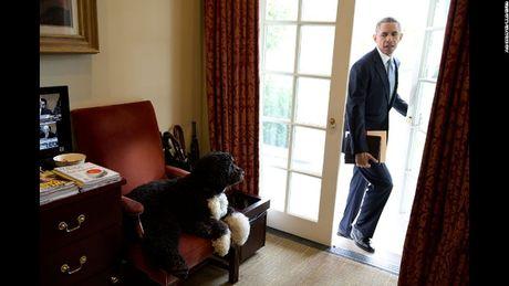 8 nam lam Tong thong My cua Barack Obama qua 100 buc anh (Phan 3) - Anh 11