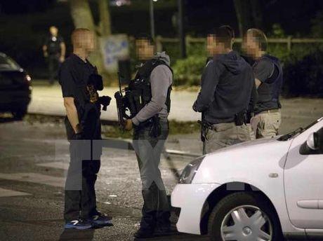 Phap bat 7 nghi can trong cac cuoc dot kich o Strasbourg va Marseille - Anh 1