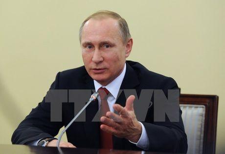 Tong thong Putin danh gia kinh te Nga chuyen bien tich cuc - Anh 1
