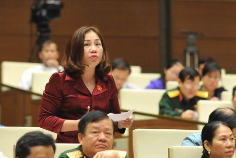 Luat Ho tro DNNVV: Khong the cham tre duoc nua - Anh 2