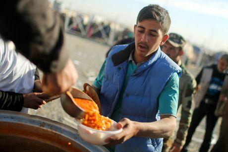 Chum anh khung hoang nhan dao o thanh pho Mosul - Anh 13