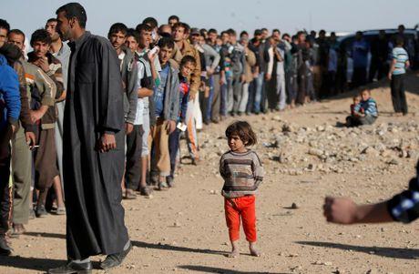 Chum anh khung hoang nhan dao o thanh pho Mosul - Anh 14