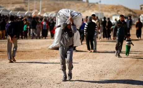 Chum anh khung hoang nhan dao o thanh pho Mosul - Anh 2
