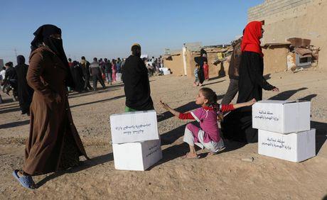 Chum anh khung hoang nhan dao o thanh pho Mosul - Anh 8