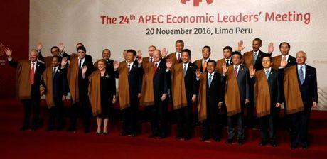 Hoi nghi Thuong dinh APEC 2016: Chong bao ho va tham nhung - Anh 1