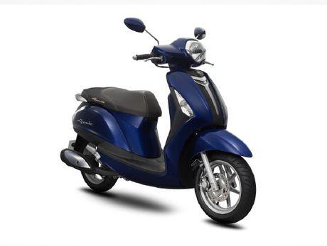 Yamaha Viet Nam da trieu hoi duoc 77.000 xe Grande do loi binh xang phu - Anh 1
