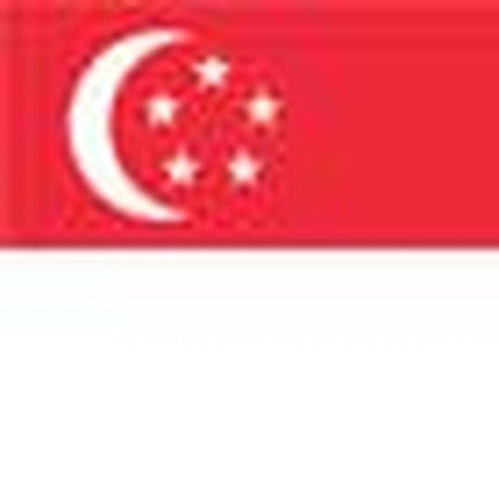 Chi tiet Thai Lan - Singapore: Dot bien tu khong chien (KT) - Anh 2