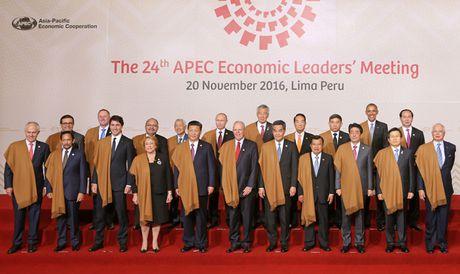 APEC can chong chu nghia bao ho duoi moi hinh thuc - Anh 1