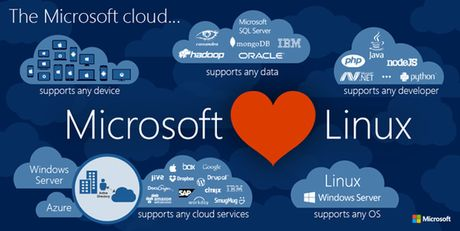 Microsoft gia nhap... Linux Foundation - Anh 1