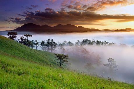 Nhung diem den dep 'rung tim' o Da Lat xuat hien trong MV moi cua Quang Vinh - Anh 8