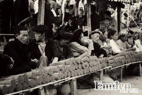 Cao nguyen da Ha Giang dep ki vi qua nhung thuoc hinh den trang - Anh 11