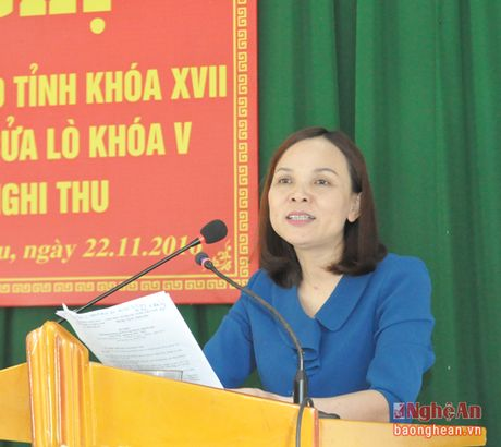Pho Bi thu Thuong truc Tinh uy Nguyen Xuan Son tiep xuc cu tri thi xa Cua Lo - Anh 5