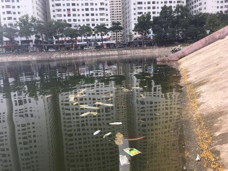 Kinh hai hinh anh hang tram chiec bao cao su da su dung noi lenh phenh tren mat ho Linh Dam - Anh 7