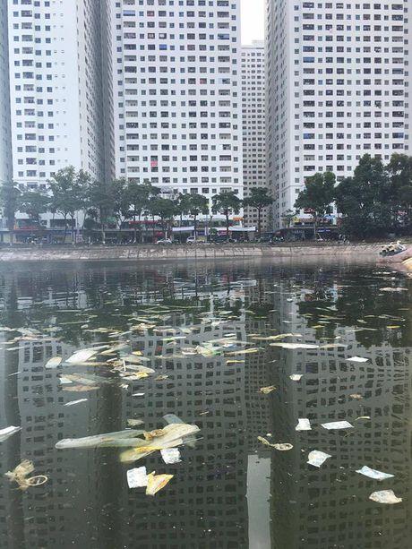 Gap tac gia Tay chup anh bao cao su noi trang ho Linh Dam - Anh 4