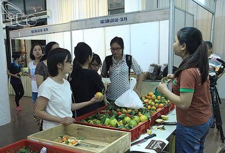 Khai mac Ngay hoi Huong sac vung cao tai Ha Noi - Anh 13