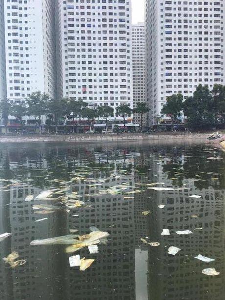Bao cao su trang ho Linh Dam, co ai xau ho? - Anh 2