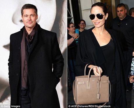 Brad Pitt va Angelina Jolie se tai hop dip le Ta on - Anh 1