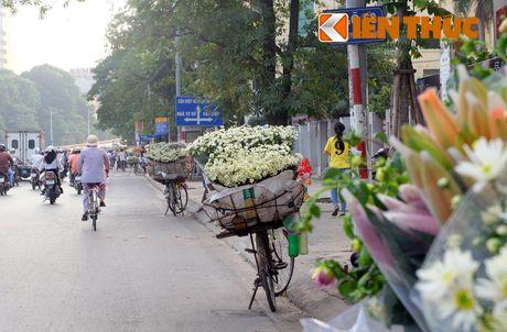 Pho phuong Ha Noi dep nao long mua cuc hoa mi - Anh 14