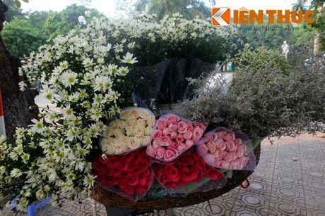 Pho phuong Ha Noi dep nao long mua cuc hoa mi - Anh 9