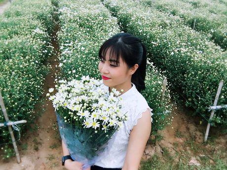 MC Hoang Linh xinh dep giua vuon cuc hoa mi - Anh 2