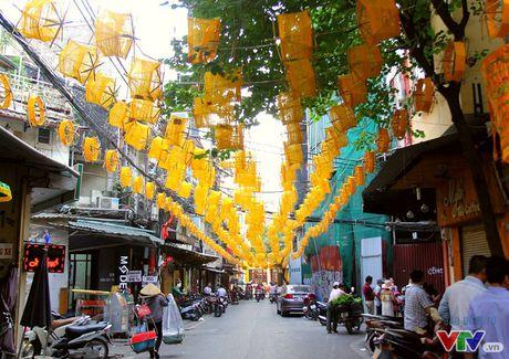 """Lung linh """"con duong to"""" giua pho co Ha Noi - Anh 1"""