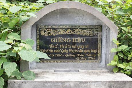 Hien tuong ky la quanh gieng Tien giua lang dao Van Don - Anh 3
