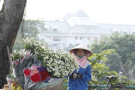 Ha Noi vao mua cuc hoa mi - truoc luc 'len ngoi' la mot thoi quen lang - Anh 9